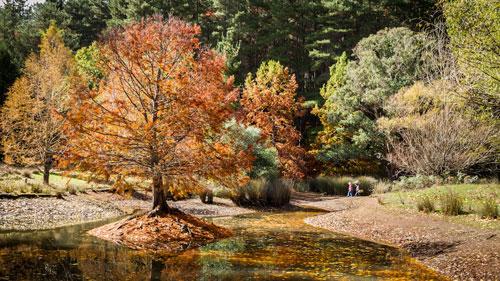 Blackwood River Valley